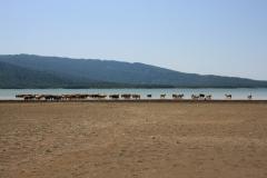 9-Jezero-Shaori